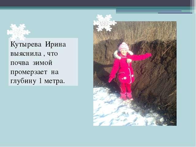 Кутырева Ирина выяснила , что почва зимой промерзает на глубину 1 метра.