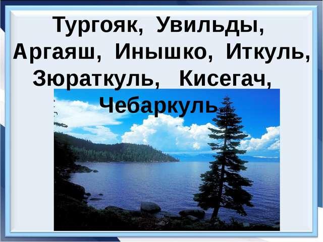 Тургояк, Увильды, Аргаяш, Инышко, Иткуль, Зюраткуль, Кисегач, Чебаркуль.