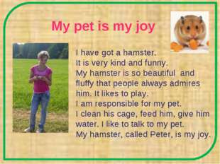 My pet is my joy I have got a hamster. It is very kind and funny. My hamster