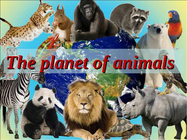 The planet of animals