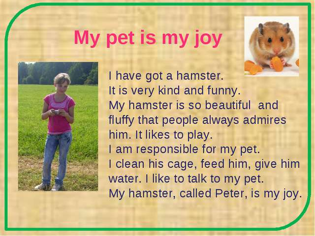 My pet is my joy I have got a hamster. It is very kind and funny. My hamster...