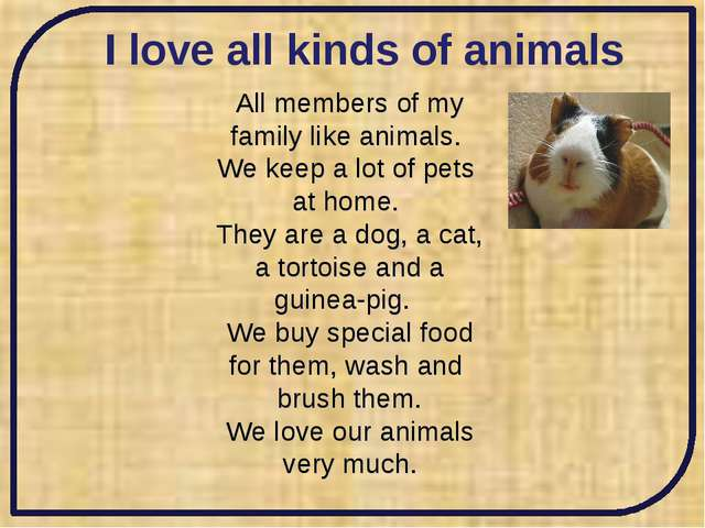 I love all kinds of animals All members of my family like animals. We keep a...