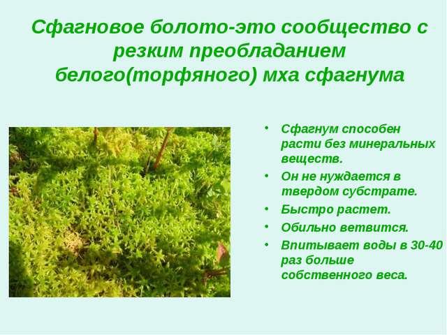 Сфагновое болото-это сообщество с резким преобладанием белого(торфяного) мха...