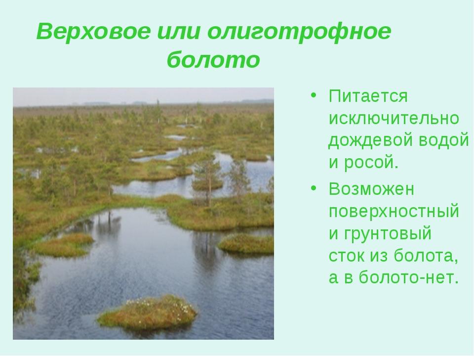 Верховое или олиготрофное болото Питается исключительно дождевой водой и росо...