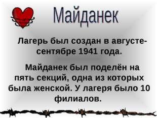 Лагерь был создан в августе-сентябре 1941 года. Майданек был поделён на пять