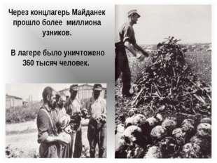 Через концлагерь Майданек прошло более миллиона узников. В лагере было уничто