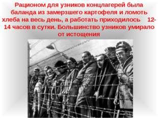Рационом для узников концлагерей была баланда из замерзшего картофеля и ломот