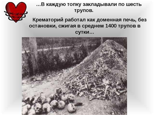 …В каждую топку закладывали по шесть трупов. Крематорий работал как доменная...