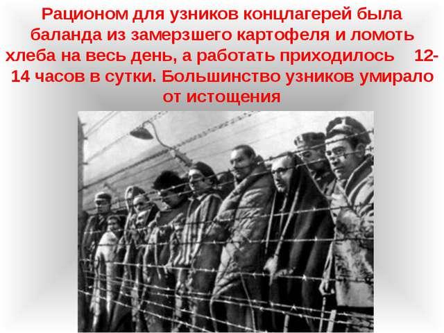 Рационом для узников концлагерей была баланда из замерзшего картофеля и ломот...