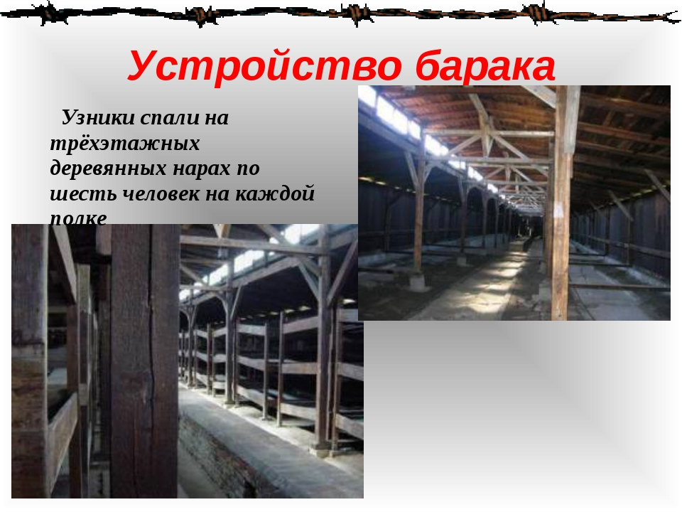 Устройство барака Узники спали на трёхэтажных деревянных нарах по шесть челов...