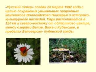 «Русский Север» создан 20 марта 1992 года с целью сохранения уникальных приро