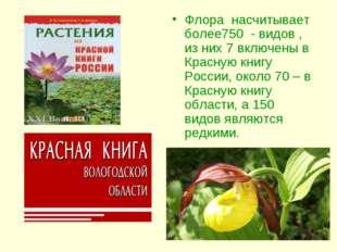 Флора насчитывает более750 - видов , из них 7 включены в Красную книгу России