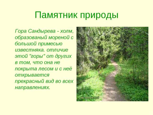 Памятник природы Гора Сандырева - холм, образованый мореной с большой примесь...
