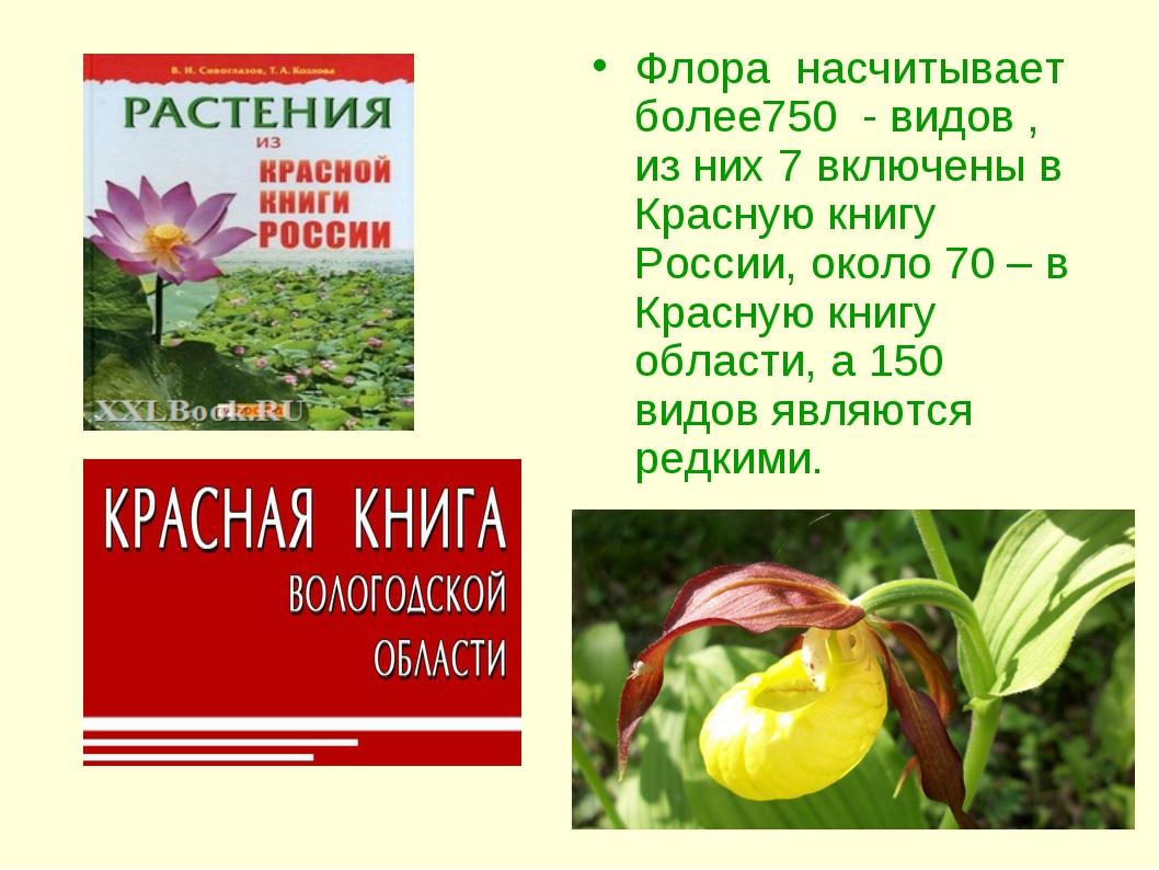 Флора насчитывает более750 - видов , из них 7 включены в Красную книгу России...