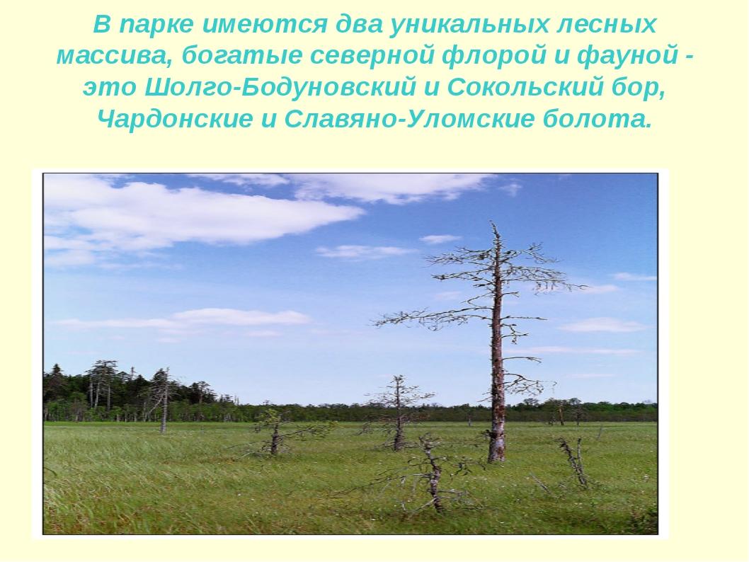 В парке имеются два уникальных лесных массива, богатые северной флорой и фаун...