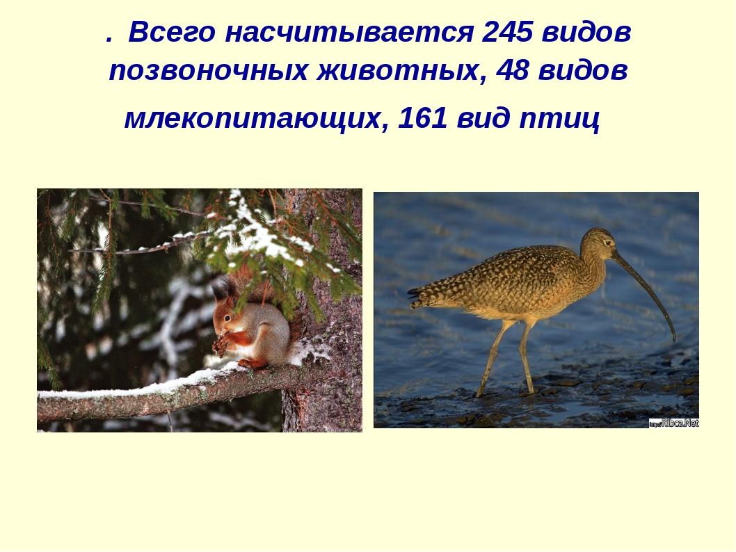 . Всего насчитывается 245 видов позвоночных животных, 48 видов млекопитающих,...