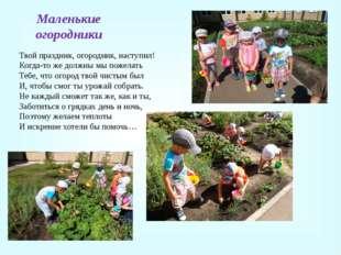 Маленькие огородники Твой праздник, огородник, наступил! Когда-то же должны