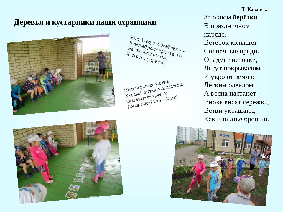 Деревья и кустарники наши охранники Л. Каваляка За окномберёзки В празднично...