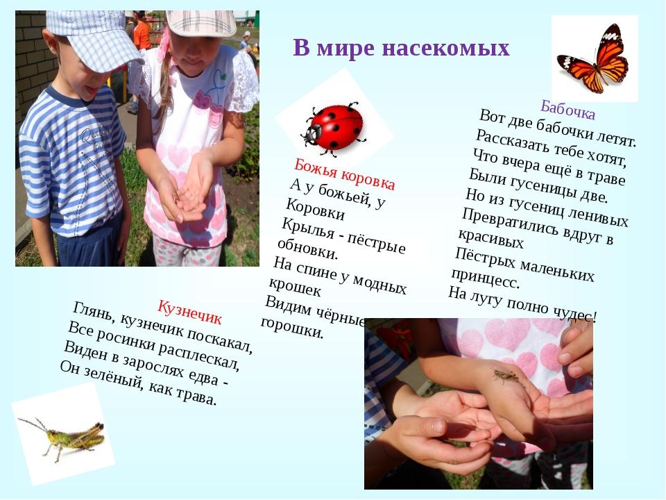 В мире насекомых Кузнечик Глянь, кузнечик поскакал, Все росинки расплескал, В...