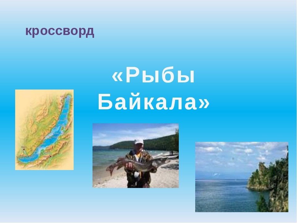 кроссворд «Рыбы Байкала»