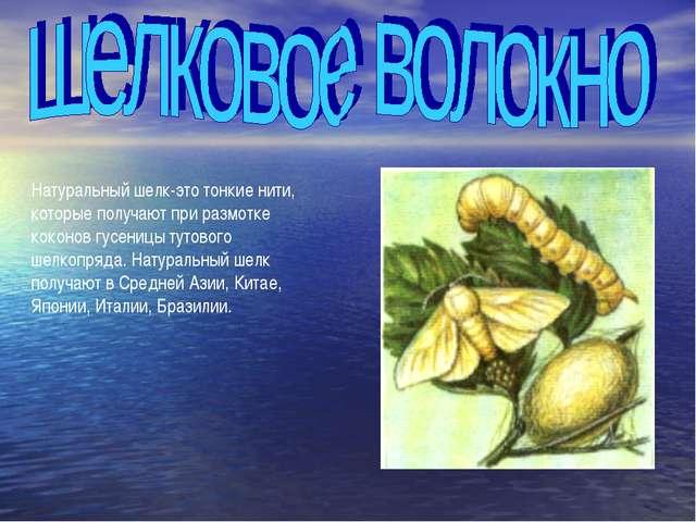 Натуральный шелк-это тонкие нити, которые получают при размотке коконов гусен...