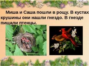 Миша и Саша пошли в рощу. В кустах крушины они нашли гнездо. В гнезде пищали