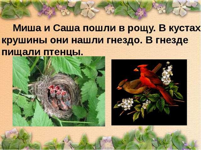 Миша и Саша пошли в рощу. В кустах крушины они нашли гнездо. В гнезде пищали...