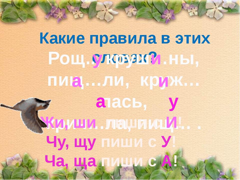 Какие правила в этих словах? Рощ.., круш…ны, пищ…ли, круж…лась, крич…ла, пищ…...