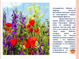 Большинство бабочек в природе питается цветочным нектаром. Далее по популярно