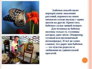 Бабочки способствуют перекрёстному опылению растений, перенося на своем мохн