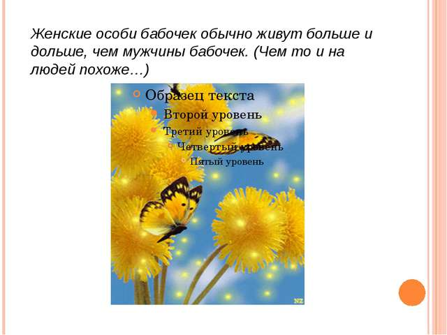 Женские особи бабочек обычно живут больше и дольше, чем мужчины бабочек. (Чем...
