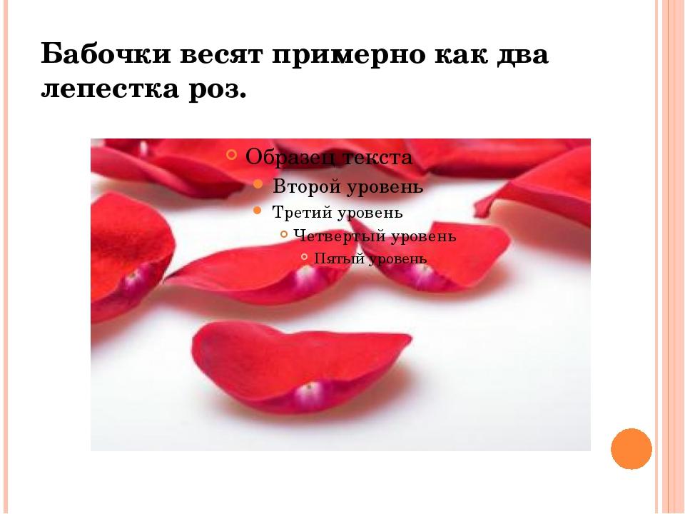 Бабочки весят примерно как два лепестка роз.