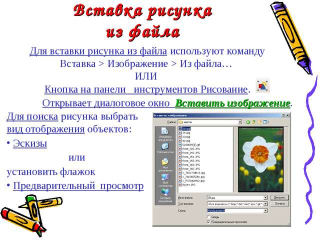 Вставка рисунка из файла Для вставки рисунка из файла используют команду Вста...