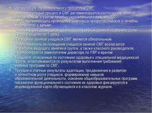 Организация образовательного процесса в СМГ. Образовательный процесс в СМГ ре