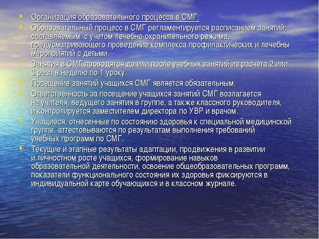 Организация образовательного процесса в СМГ. Образовательный процесс в СМГ ре...