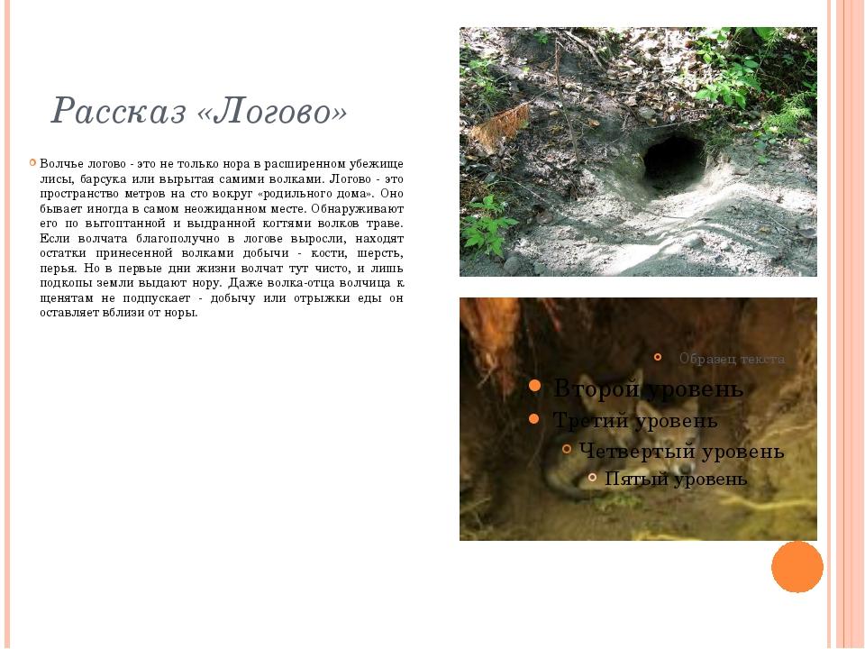 Рассказ «Логово» Волчье логово - это не только нора в расширенном убежище лис...