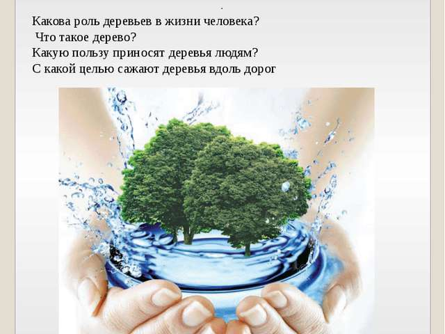 Основополагающий вопрос: Зачем нужны деревья? Проблемные вопросы . Какова рол...