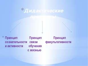 Принцип Принцип Принцип сознательности связи факультативности и активности об