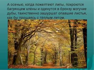 А осенью, когда пожелтеют липы, покроются багрянцем клёны и оденутся в бронз