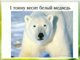 1 тонну весит белый медведь