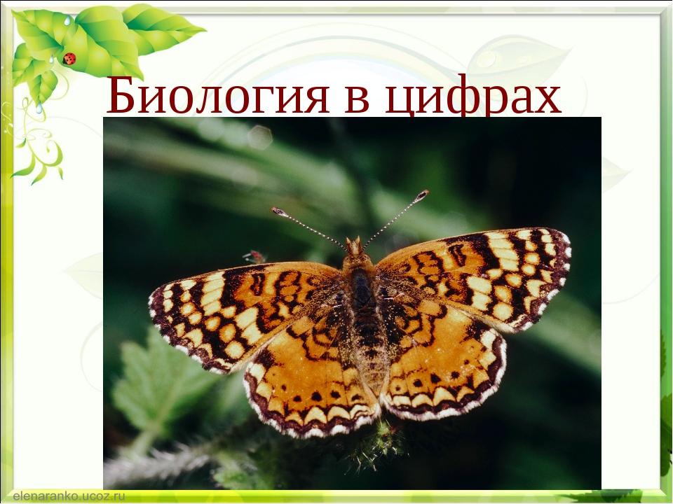 Биология в цифрах Подготовила учитель биологии Трухина М.В.