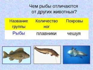 Чем рыбы отличаются от других животных? плавники чешуя