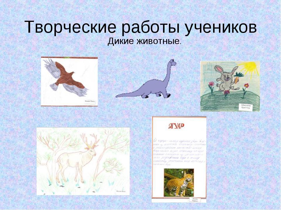 Творческие работы учеников Дикие животные.
