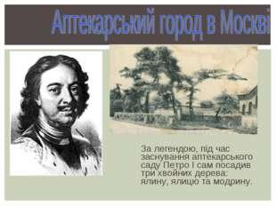 За легендою, під час заснування аптекарського саду Петро І сам посадив три хв
