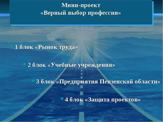 Мини-проект «Верный выбор профессии» 1 блок «Рынок труда» 2 блок «Учебные учр...