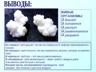 Во-первых: гриб дышал, так как на поверхности кефира образовывались пузыри; В