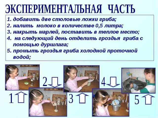 добавить две столовые ложки гриба; налить молоко в количестве 0,5 литра; накр...