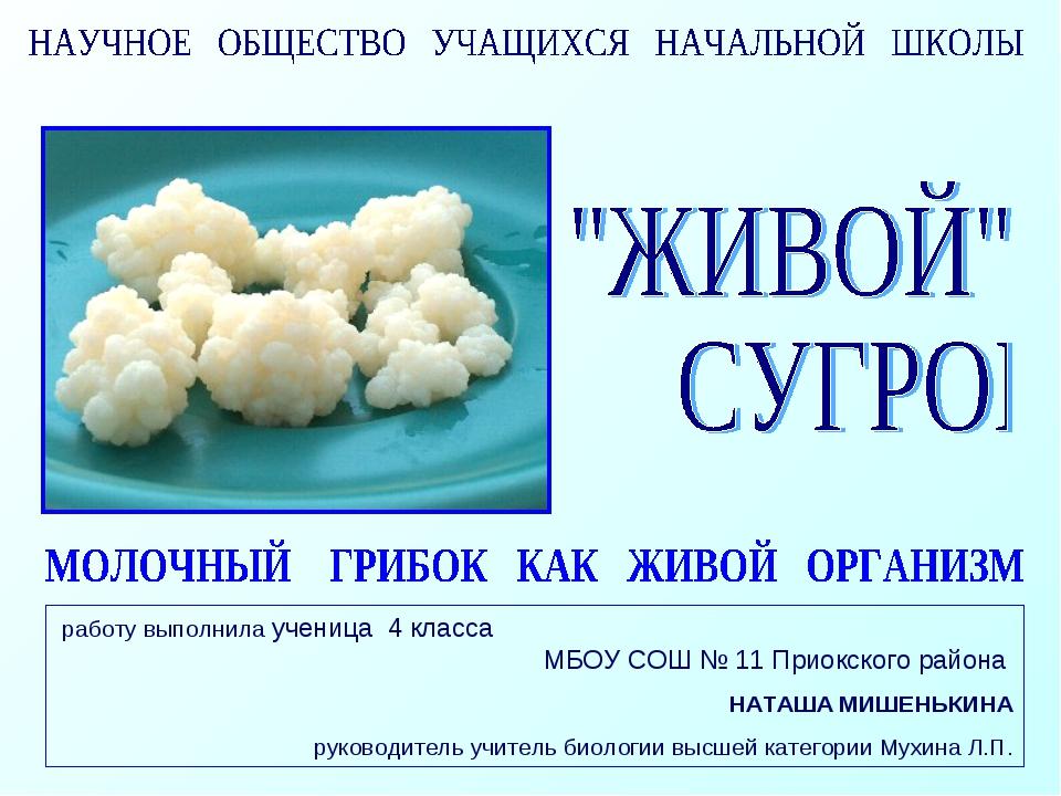 работу выполнила ученица 4 класса МБОУ СОШ № 11 Приокского района НАТАША МИШЕ...