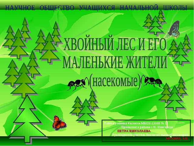 Работа ученика 4 класса МБОУ СОШ № 11 Приокского района г.Н. Новгорода ПЕТРА...