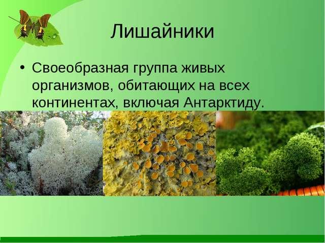 Лишайники Своеобразная группа живых организмов, обитающих на всех континентах...